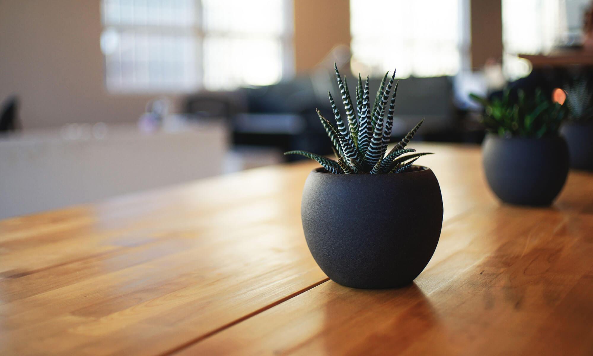 Fliesen und Trockenbau Tipps und Tricks
